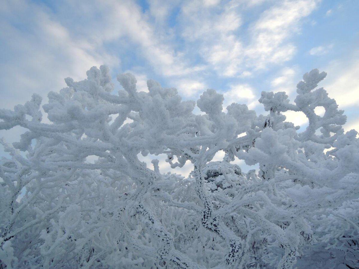 넘 멋진 태백산 눈 풍경 구경 하세요. https://t.co/12GySg3qR6