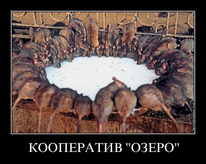 В Европарламенте призвали Россию выполнить минские соглашения - Цензор.НЕТ 6278