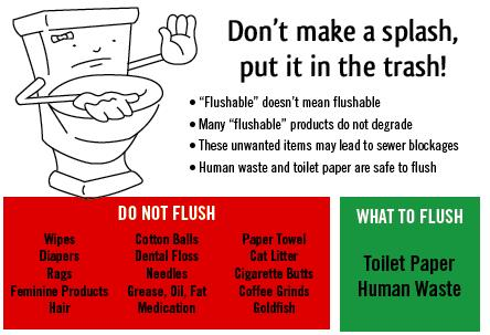 City of brandon on twitter fast fact friday your daily bathroom business toilet paper are - Things never flush ...