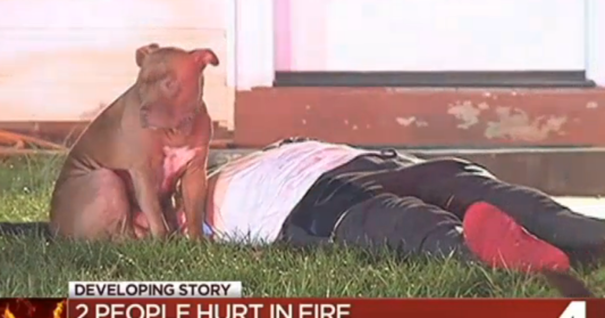 """Ugh, So wrong! """"Pit Bull Who Stood By Injured Owner During Fire Getting Kicked Out Of Town"""" https://t.co/dwOi3C9gV7 https://t.co/RPfMSShvSC"""