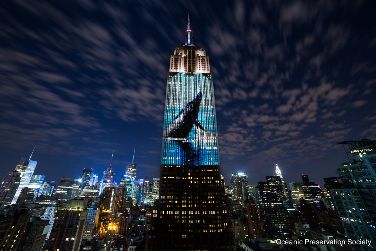 Missed @Discovery's @RacingXtinction? Watch Act 1 now & catch the full encore 12/5 at 9/8c: https://t.co/Low6hrba6a. https://t.co/pYo9nBhr2n