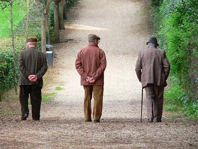 Ddl Stabilità: niente tasse per i pensionati fino a 8000 euro