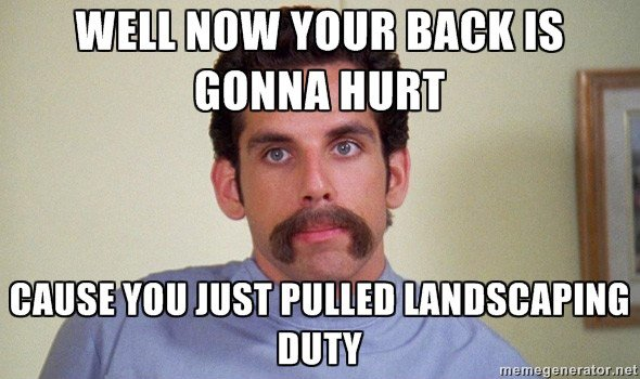 well now your back is gonna hurt because you just pulled landscaping duty