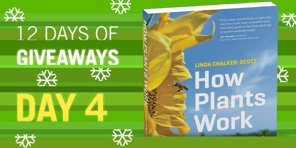 12 Days of Giveaways HOW PLANTS WORK Follow & RT to win! https://t.co/OnVQyoP6eP https://t.co/3L9bE0JbZX