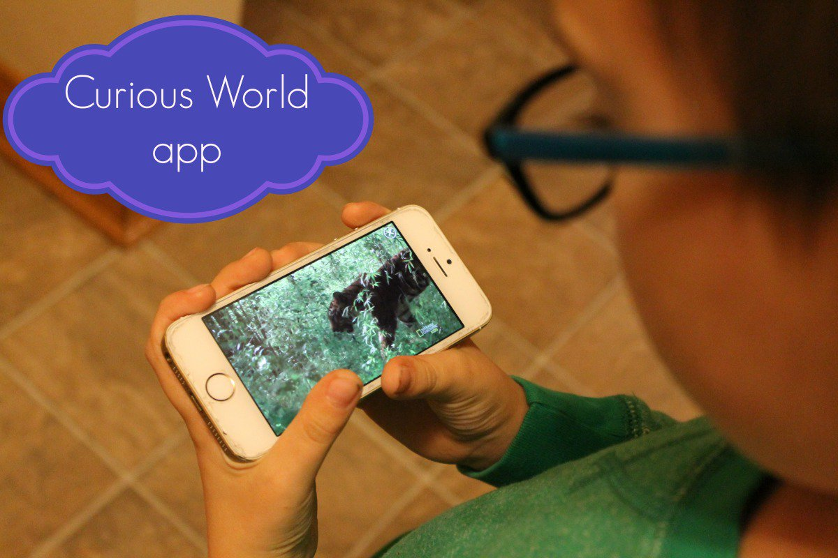 My kids are loving @CuriousWorld app tons of educational activities  https://t.co/bsjjFgIvH0 #TapintoWonder #ad https://t.co/SJv21q4Oar