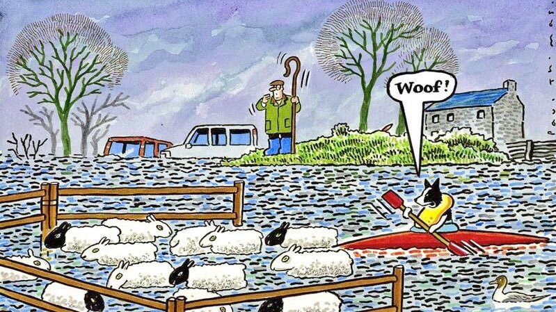 Sums up #CumbriaFloods - hope the sheep can swim! Follow @cumbriaweather for #cumbria #weather update #stormdesmond https://t.co/w5isGkDHBB