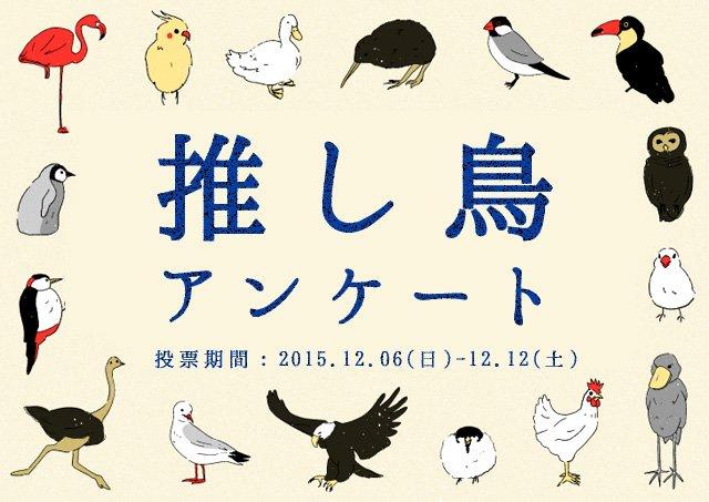 【推し「鳥(とり)」アンケート】 企画展 「とりてん 」の開催を祝し 鳥の人気投票を実施中! 皆様の推し鳥を教えてください! 目指せ、鳥ランキング1位! #とりてん <投票用URL> https://t.co/BMFqW4GTbb https://t.co/CYzYtgXzvk