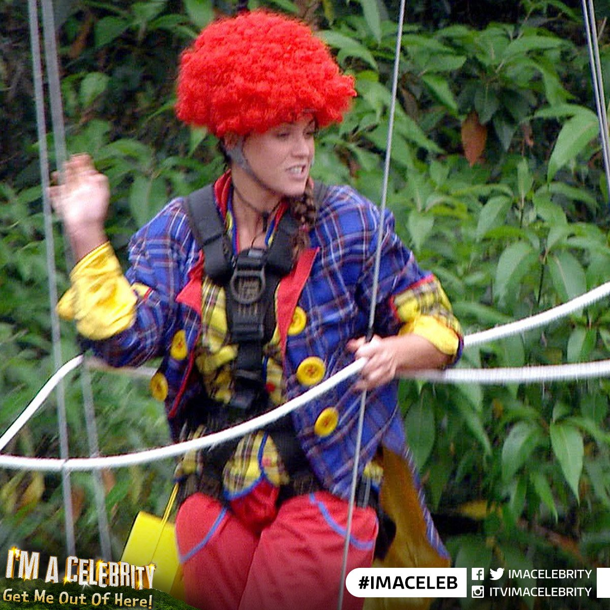I'm a Celebrity 2015 – Hundreds of complaints to OfCom about 'cruelty to animals' in Ferne's Bushtucker trial