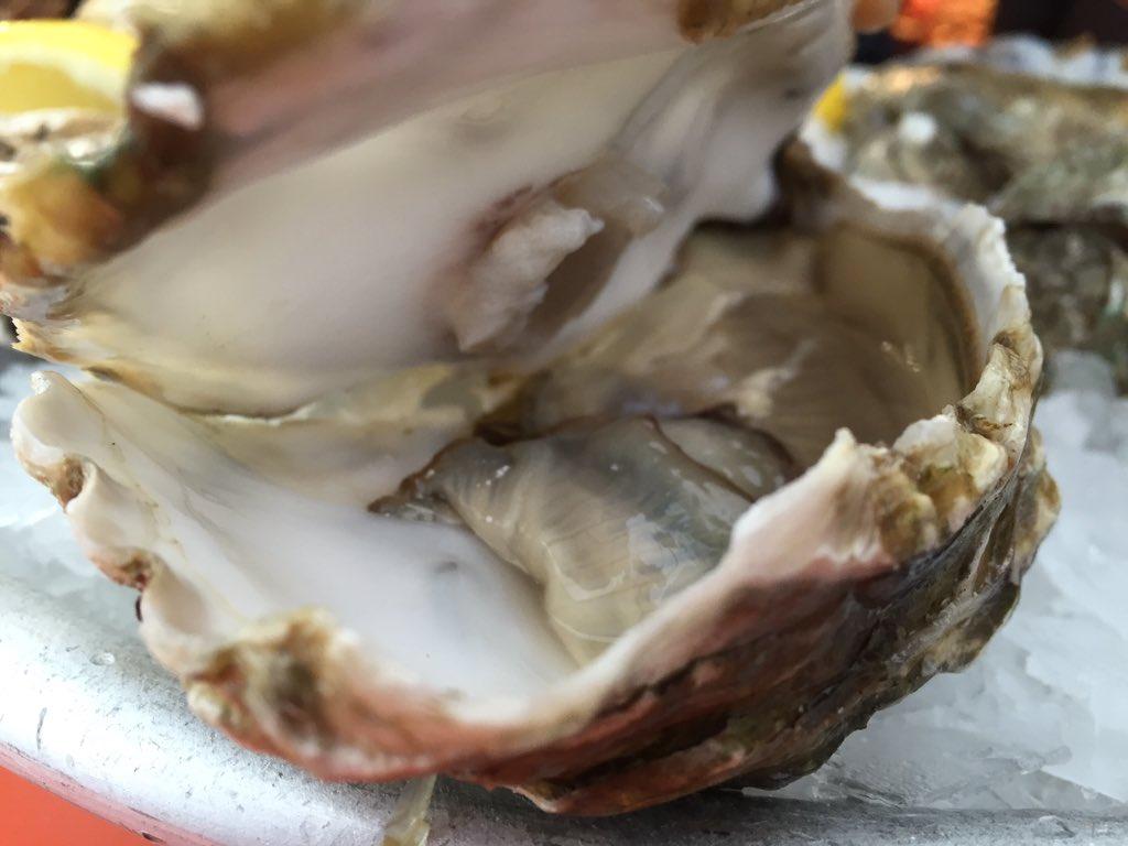 Allarme per ostriche contaminate dalla Corea