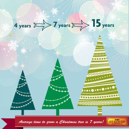 lee kum kee europe on twitter it wouldnt be complete without the christmas tree with lights do you know how long does it take to grow though - How Long Does A Christmas Tree Take To Grow
