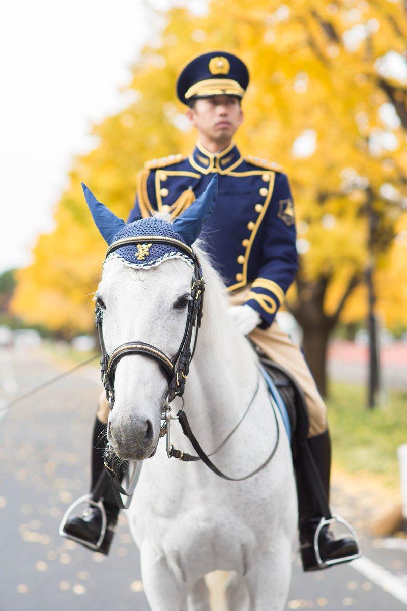 """白馬にまたがる""""警視庁騎馬隊""""がカッコよすぎる!"""