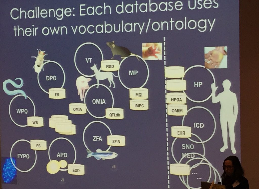 Great keynote from @ontowonka at #swat4ls We need to fix challenge of all these ontologies/vocabularies ... https://t.co/XTeGu6fOd7