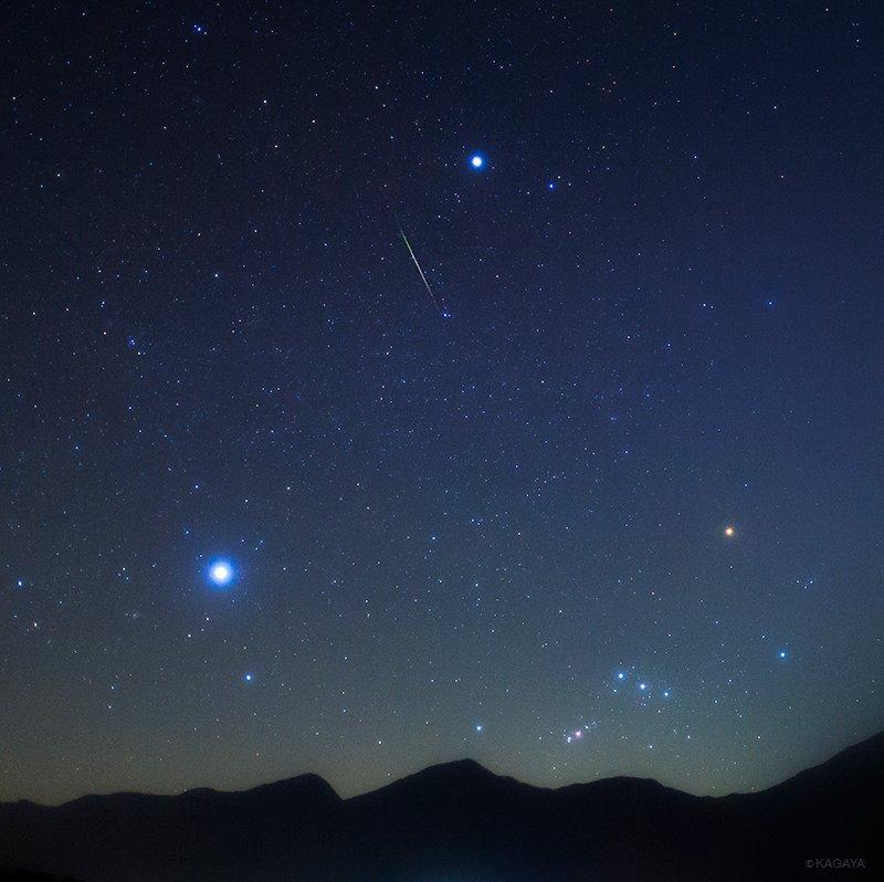沈む冬の大三角と流れ星。(昨日早朝撮影)一番明るい左下の星がシリウス。上の星がプロキオン。右下のオレンジ色の星がベテルギウスです。今日もお疲れ様でした。明日も素敵な一日になりますように。 pic.twitter.com/gm6XqC8gyQ
