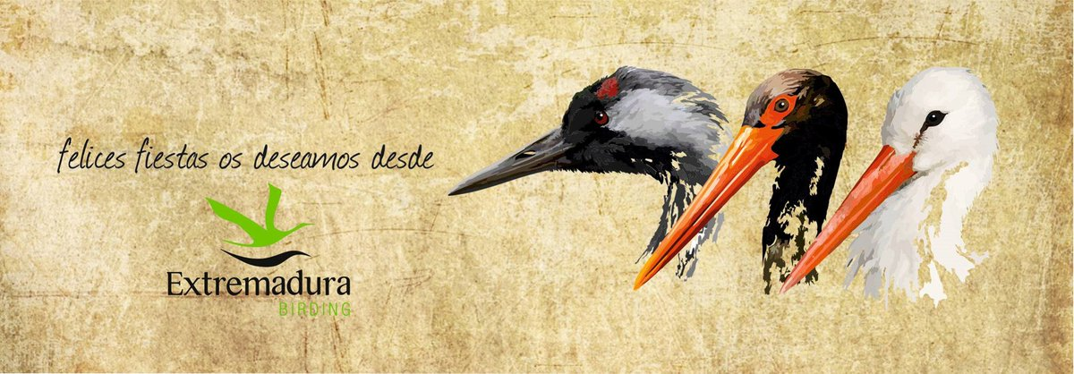 Extremadura birds