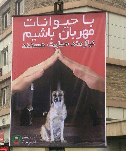 افتخاری برای شهر قزوین https://t.co/jm3Fo0EnXR