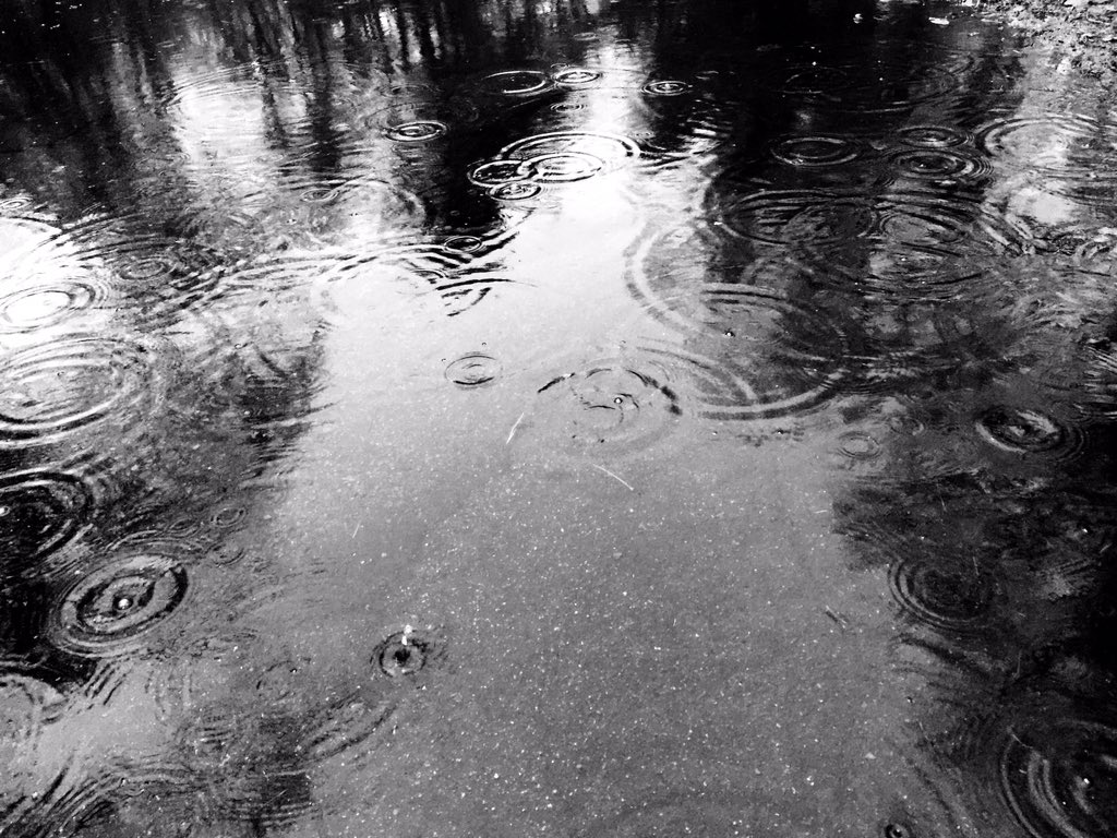 Day 356 https://t.co/BeKdLpF2oS #b&w #rain #raindrops #puddle #water #photography #project365 https://t.co/7XE9EZZyti