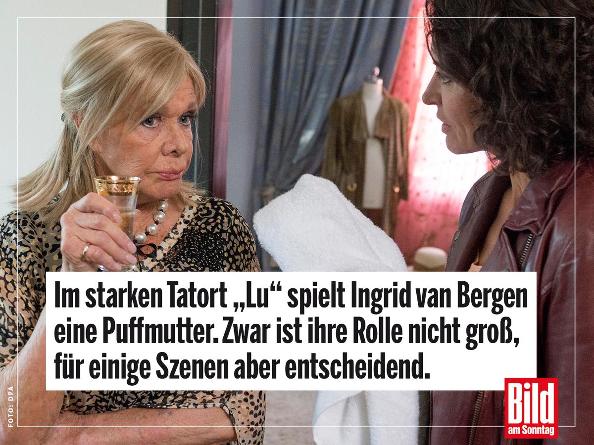 Applaus Ingrid Bergen Dschungelcamp Tatort Geschafft