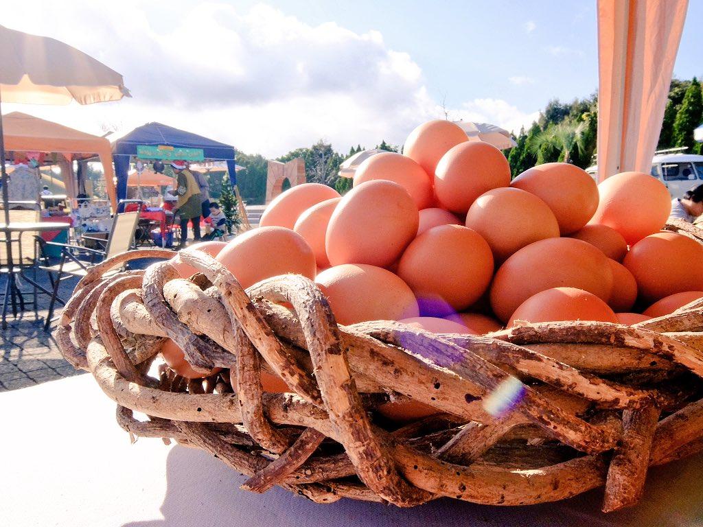 今日は久しぶりに出店者です。卵とハヤトウリを山盛りでお待ちしています。 #天草空港マルシェ 15時30分まで。蕪とレモンもあります。 https://t.co/UbIWvLTSkO