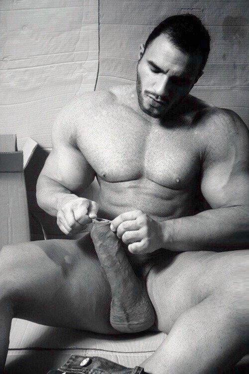 gorgeous hunks gay porn