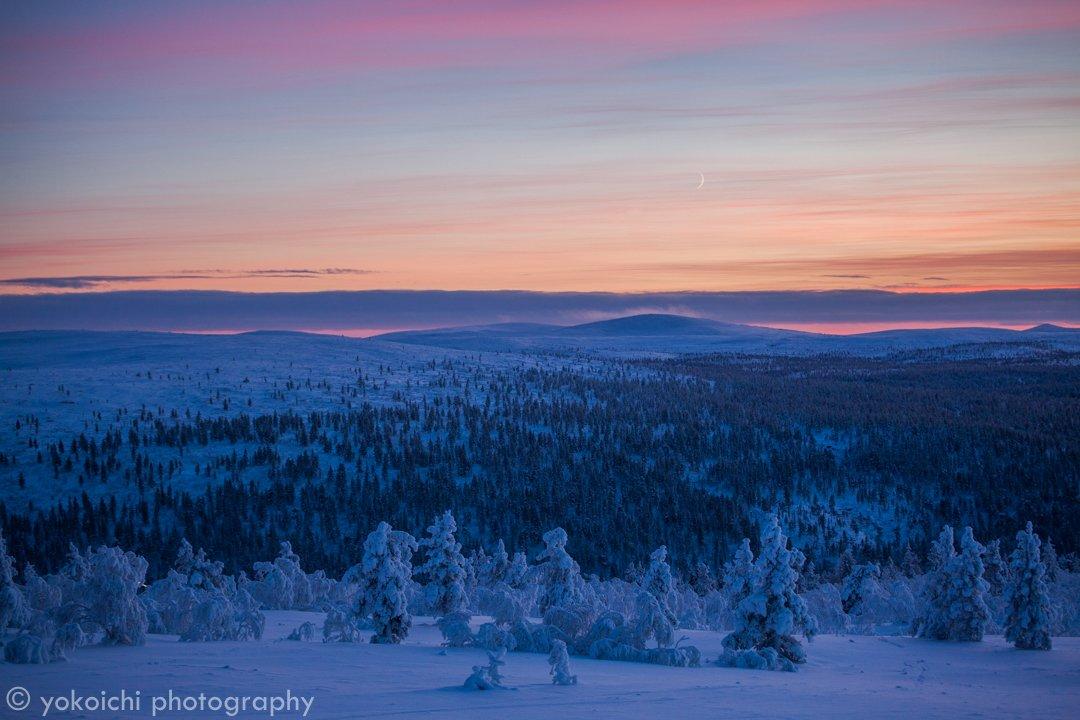 こんなにも澄みきった世界でこんなにも美しい色を重ねる空があるんだと人生で最も美しい空に出会いました#visitfinland #PolarNightMagic #feelfinnair #ファインダー越しの私の世界 pic.twitter.com/cIc3cEtNFz