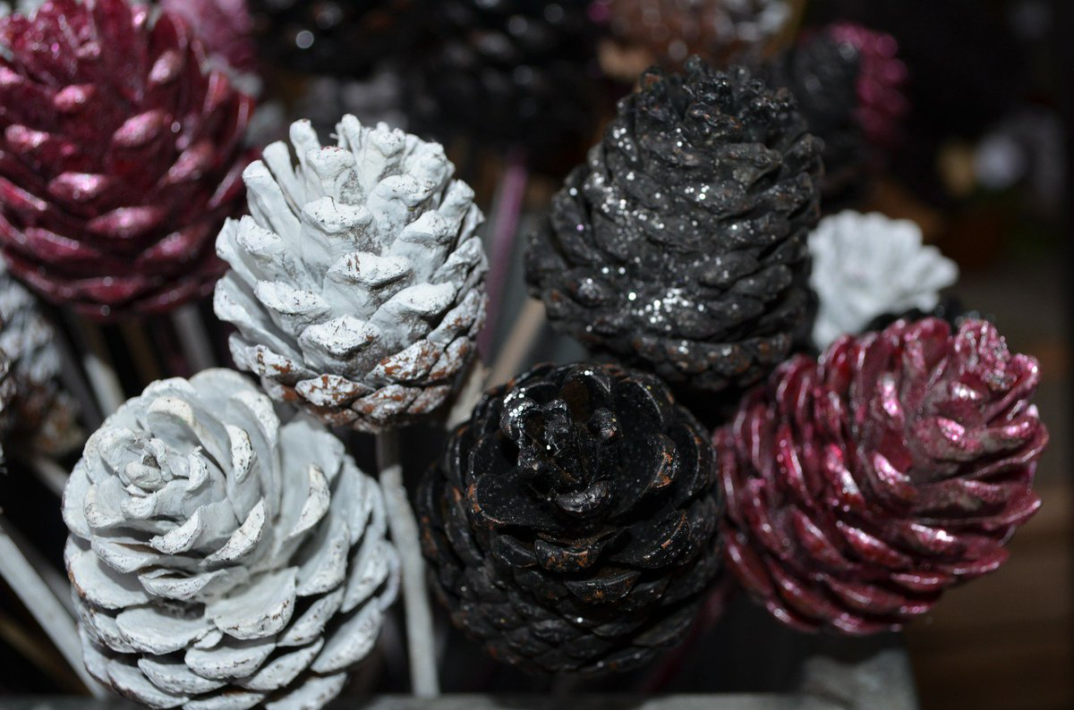 Tip - For some easy #HolidayDécor, spray-paint and arrange pine-cones with your flowers or Xmas tree. https://t.co/TKLklmNmcH