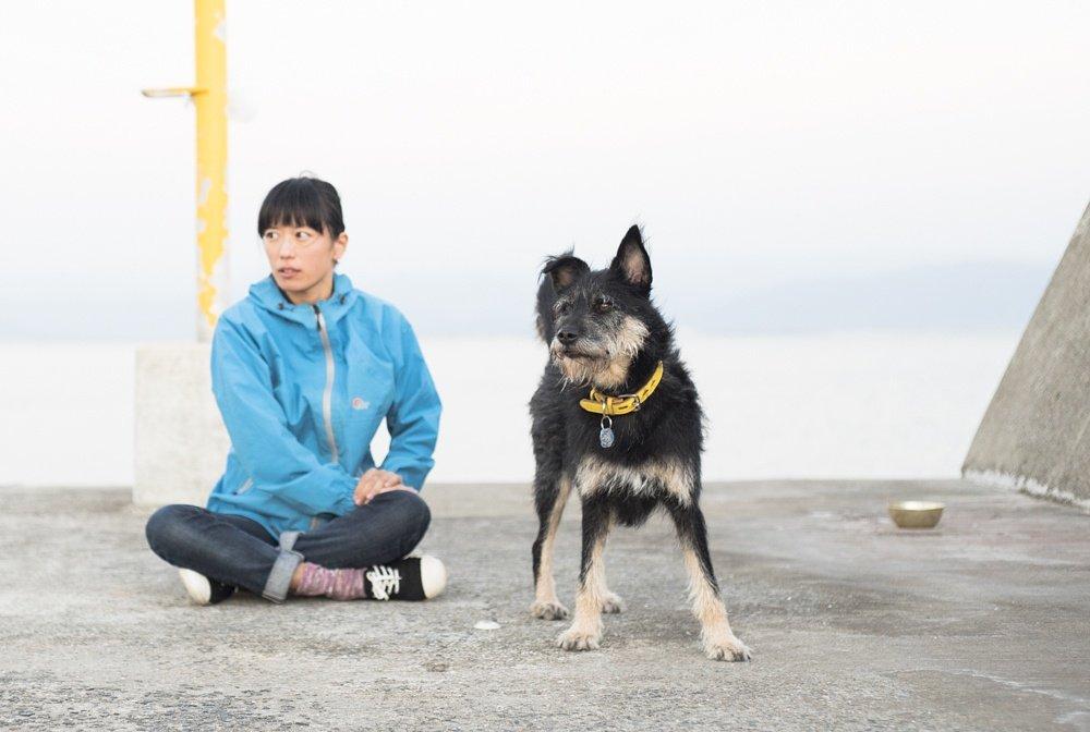 会いたい人に会いに行く旅をしよう!と、思っています。 #いぬとわたし #元保護犬 #青pic.twitter.com/PdooB6Cbcp