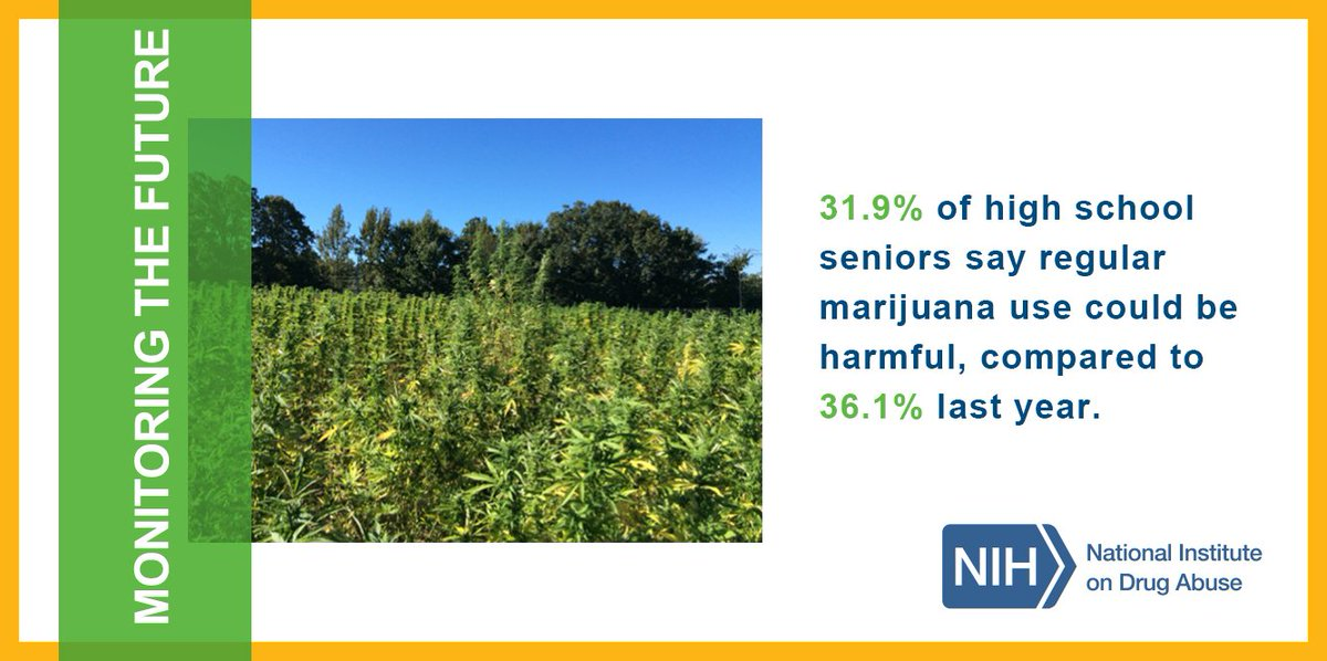 T2 #MTF2015 found a continued decline in perceived risk of #marijuana use. https://t.co/mA0e7giqAT