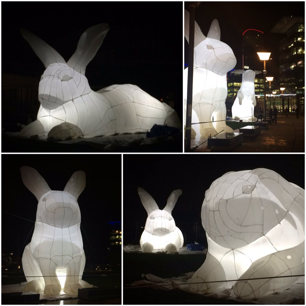 Giant rabbits at Media City! Very pretty addition to the evening dog walk. #lightwaves15 https://t.co/HRsnA1lZ0X