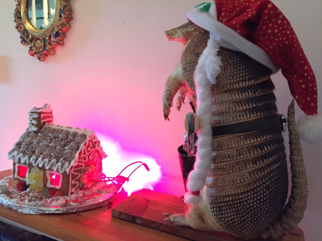 Yes it is a gingerbread brothel, guarded by a holiday armadillo sheriff. And what of it? https://t.co/CzSuBbPQqu