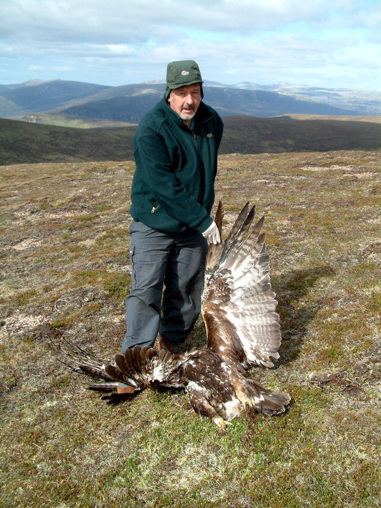 Our review shows 779 birds of prey were illegally killed in Scotland between 1994 and 2014 https://t.co/BxlOxgQ4pT https://t.co/fIW47eXw7Z