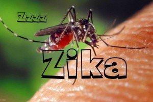 Tentang Merebaknya Wabah Virus Zika - AnekaNews.net