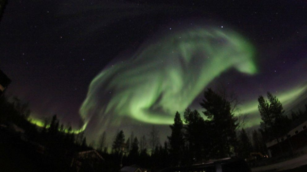 Wolf-shaped Aurora Borealis (Sweden). Imagine humans seeing something like this two thousand years ago. https://t.co/g1z42gmVdS