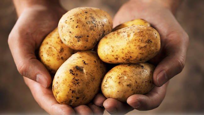 nyemir-rambut-pake-kulit-kentang