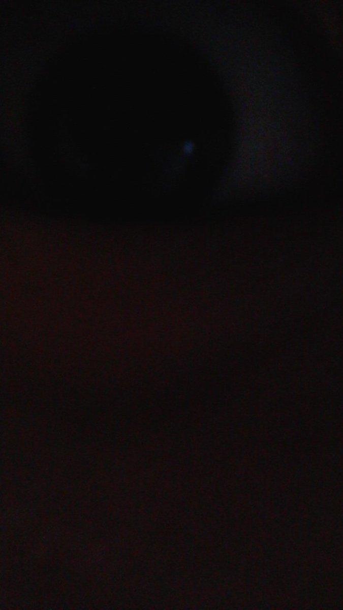 ブスは自撮りが近いようなので近めに撮りました、ご覧ください https://t.co/1ekvPBThk9