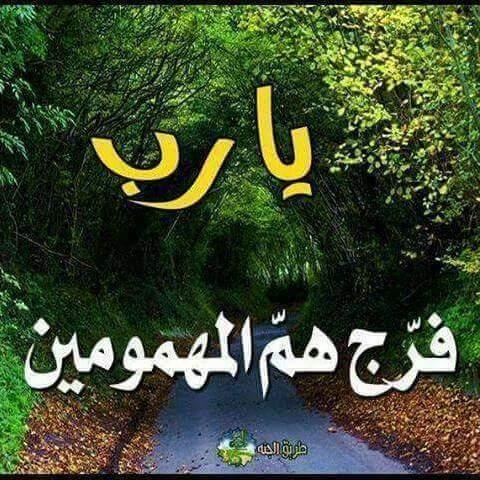 ssssssss (@AliAh899)   Twitter