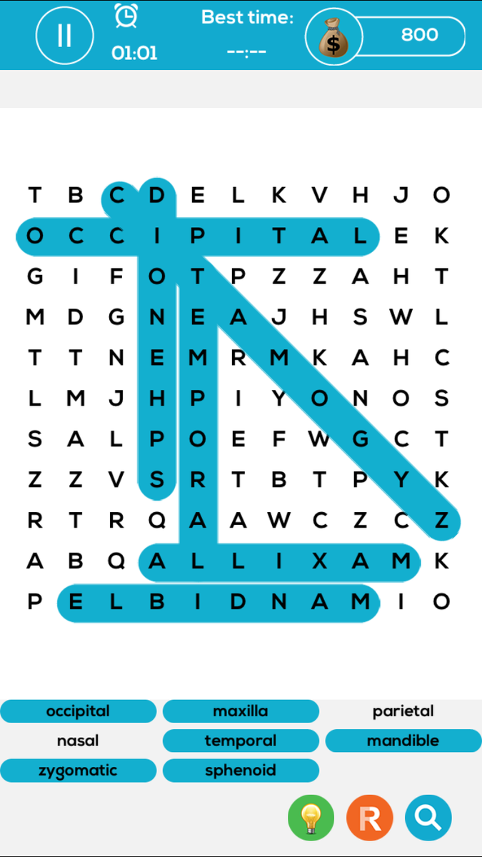 Med Brain Media On Twitter Play Anatomy Word Search One Of Our