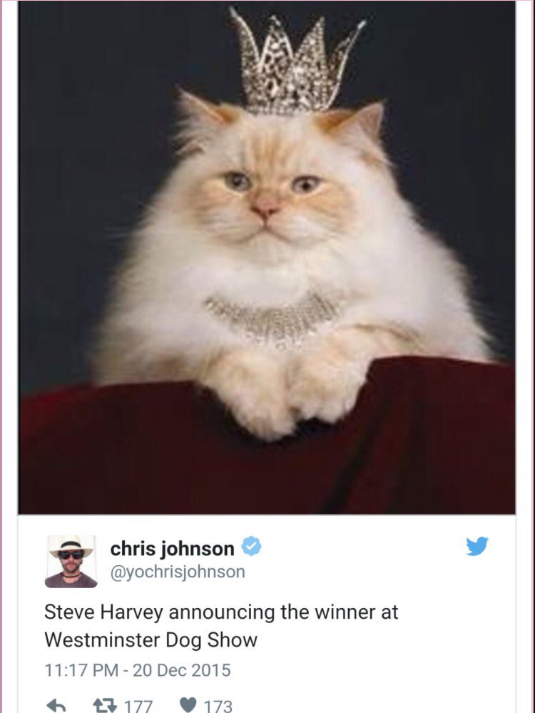 Hilarious! #SteveHarvey #MissUniverse2015 https://t.co/qlsMuwNEEb