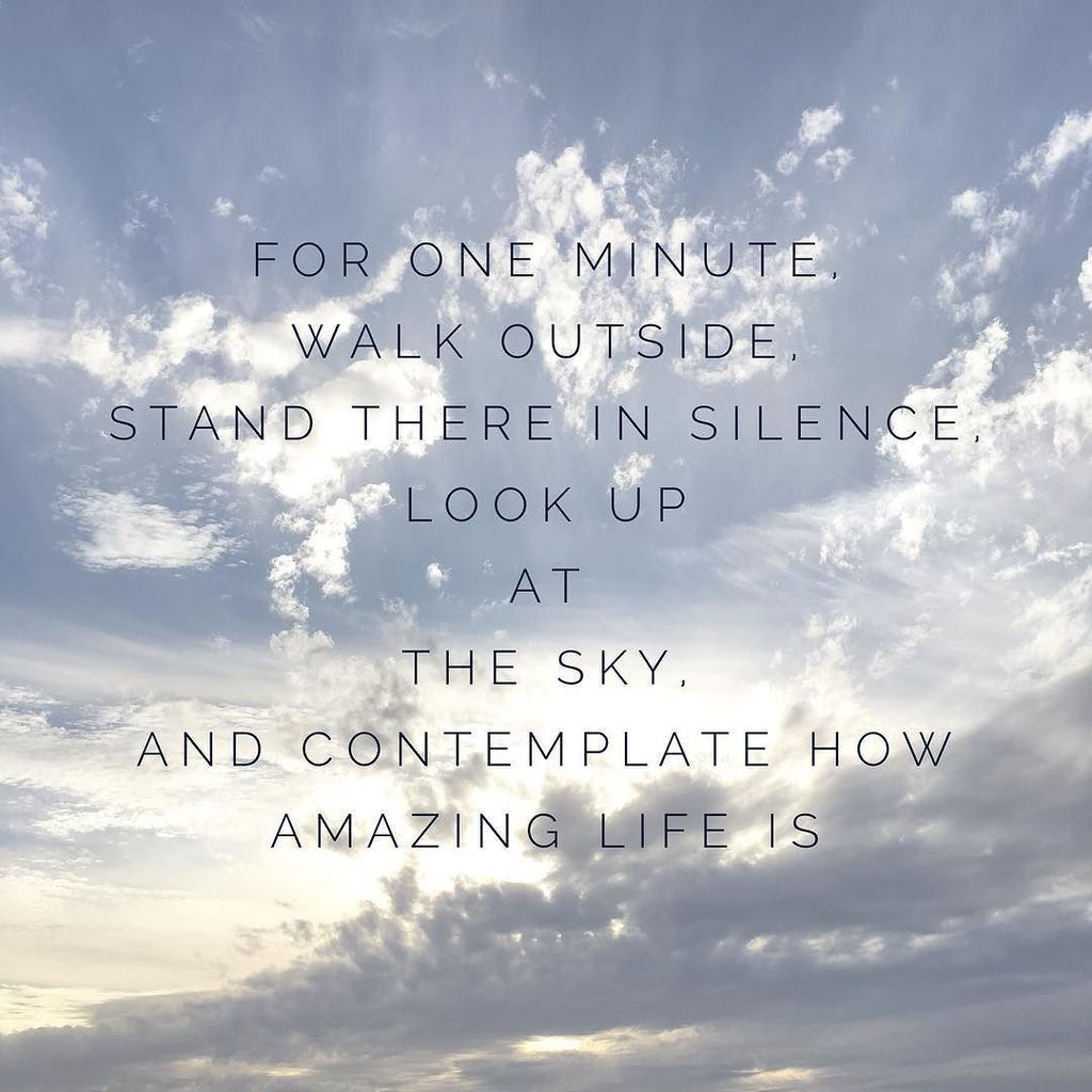 "Contemplating Life Quotes Enchanting Suzanne Le Stage On Twitter ""contemplating How Great Life Is"