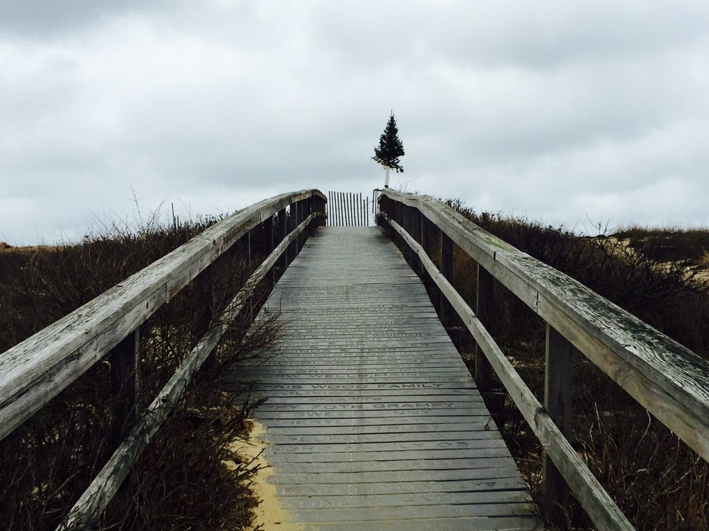 Day 355 https://t.co/BeKdLpF2oS #capecod #christmas #tree #beach #boardwalk #photography #project365 https://t.co/j9jLHJubE3
