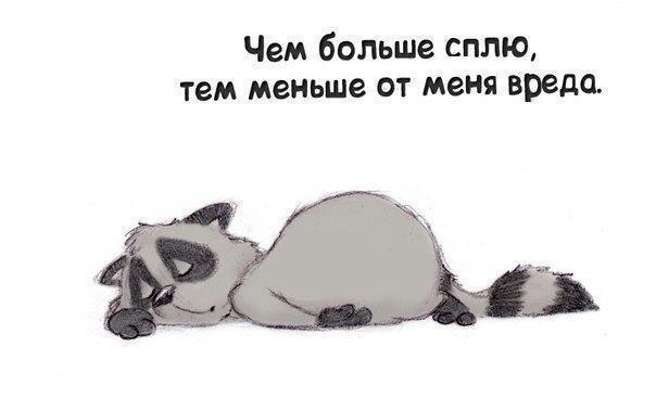 Картинки, прикольные картинки про хочу спать