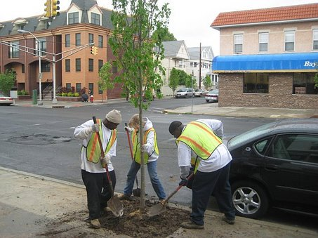 """On #treechat at 2PM """"Getting Minorities Involved in Urban Forestry"""" w/ @arborday @NJTrees & @OurCityForest https://t.co/Mse8cHZAAI"""