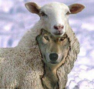 Faut-il être végétarien pour être chrétien ? - Page 7 CX0i80tWsAAtXH2
