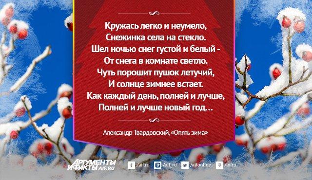 стихи о зиме классиков русской поэзии такую