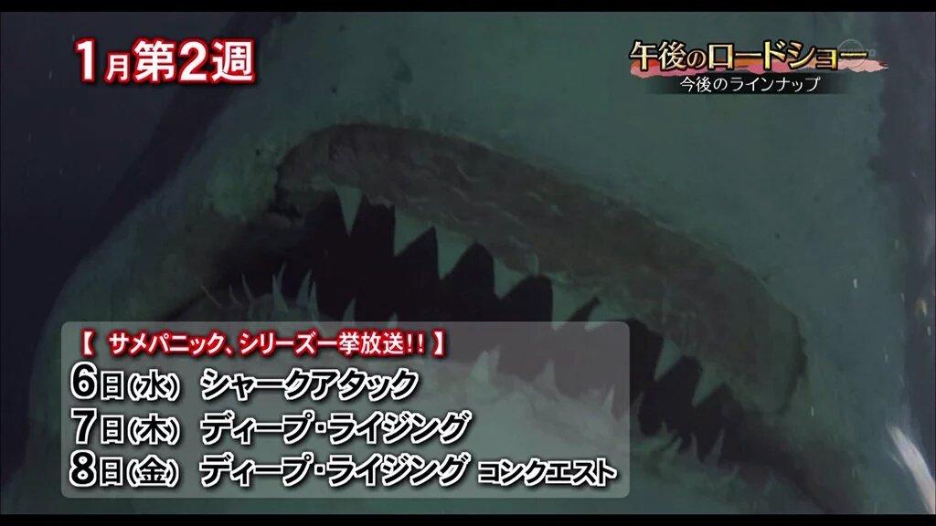 サメ正月三が日はあす6日からでした #午後ロー https://t.co/e6BDV4HxnI