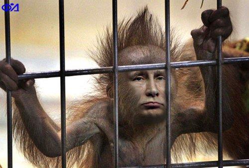 Евросуд осудил отношение России к активистам Болотной площади: Нарушены положения конвенции по правам человека - Цензор.НЕТ 5181