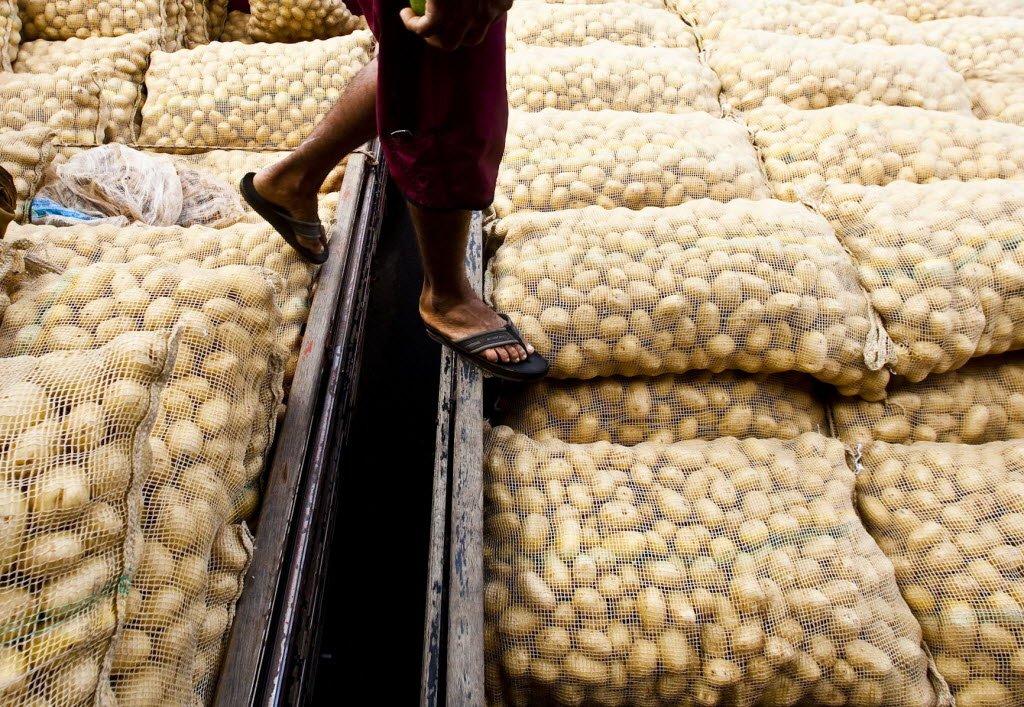 Erramos: Nasa quer levar batatas, e não baratas, para Marte https://t.co/aL5eZzJLbx