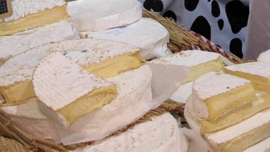 """Allerta europea per Listeria monocytogenes nel formaggio Brie con tartufo marchio """"Traditions Terroirs"""""""