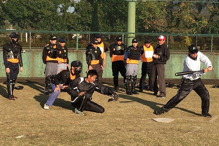日本野球機構(NPB)認証済みアカウント