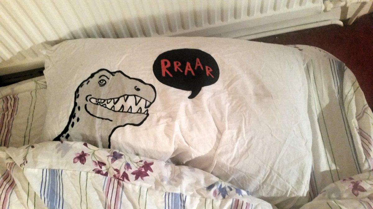 i gave my parents my bed but i kept the best pillowcase for myself @rhodri https://t.co/ir2u0qXj6R