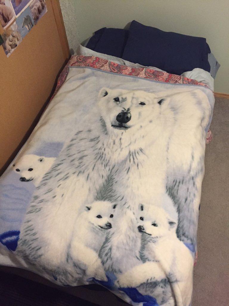 @rhodri Nothing says Christmas like a life size fleece polar bear. I'm 32. https://t.co/ln81Qb1xTj